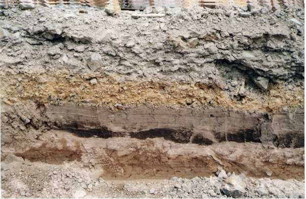 New zealand example for Soil and geology